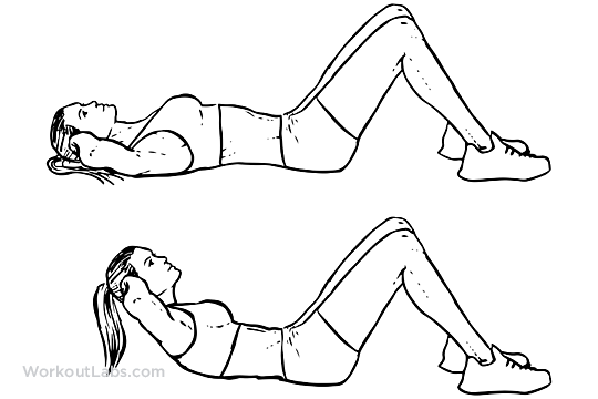 Trunk Exercises Improve Your Core Lifespan Therapies